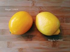Meyer Lemons vs. Regular Lemons